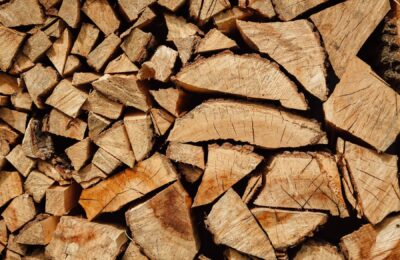 Things to Know About Buying the Best Firewood